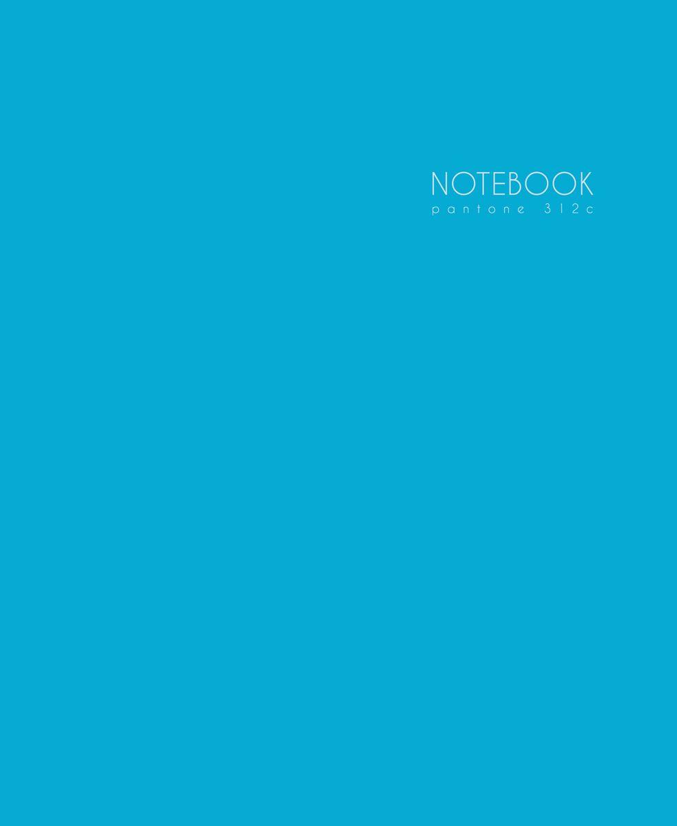 Канц-Эксмо Записная книжка Новая палитра в клетку 96 листов цвет лазурный, морской формат А5ЕТИЛ59666Записная книжка Канц-Эксмо Новая палитра формата А5 (167х210 мм) великолепно подойдет для заметок и зарисовок и позволит систематизировать поступающую информацию. Книга имеет сшитый внутренний блок из офсетной бумаги плотностью 60гр/м2 с разметкой в клетку. Твердая обложка оформлена ярким рисунком.