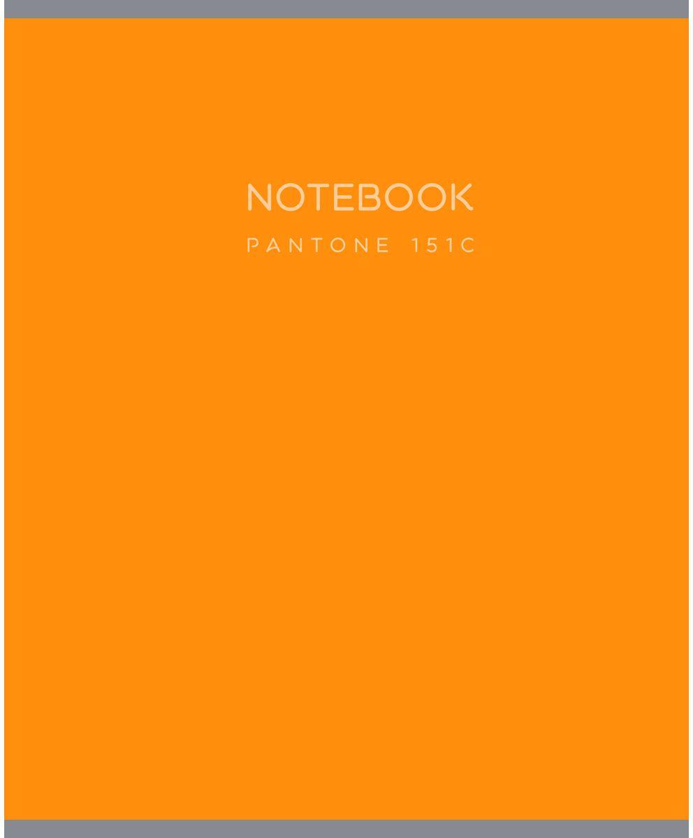 Канц-Эксмо Тетрадь Магия цвета в клетку 48 листов цвет оранжевый формат А4Т4484372Тетрадь Канц-Эксмо Магия цвета формата А4 великолепно подойдет для конспектов и различных записей. Тетрадь имеет внутренний блок на скрепках из белой офсетной бумаги плотностью 60гр/м2 с разметкой в клетку. Обложка выполнена из картона с ярким рисунком.