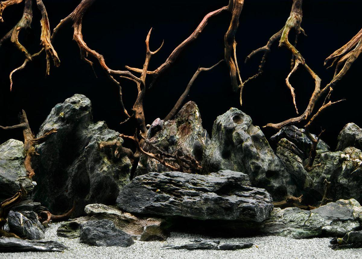Фон аквариумный Barbus Морская лагуна. Натуральная мистика, двухсторонний, 60 см х 124 см фон для презентации черный