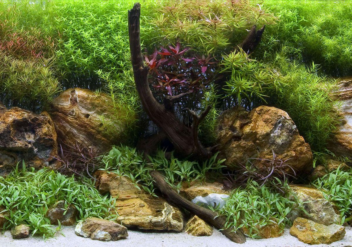 Фон аквариумный Barbus Водный сад. Яркие камни, двухсторонний, 45 х 94 смBACKGROUND 017