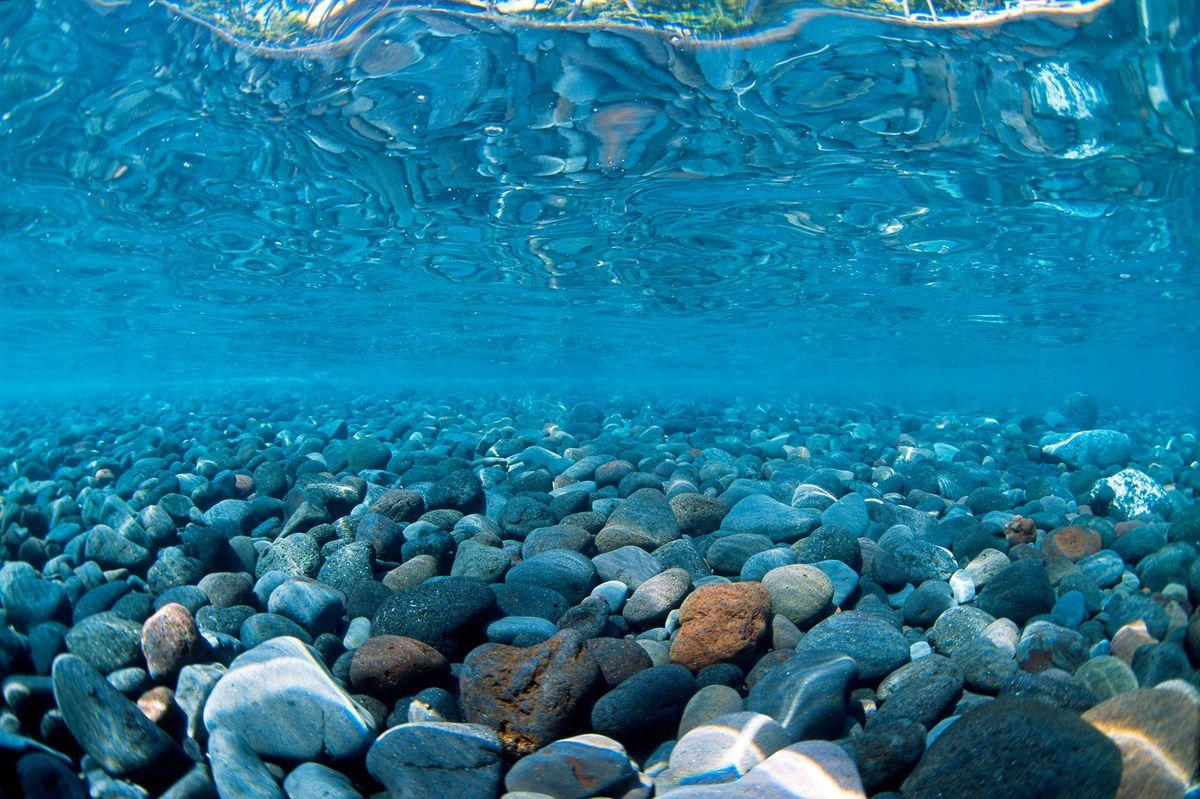 Фон аквариумный Barbus Горная река. Зеленое море, двухсторонний, 60 см х 124 см фон для презентации черный