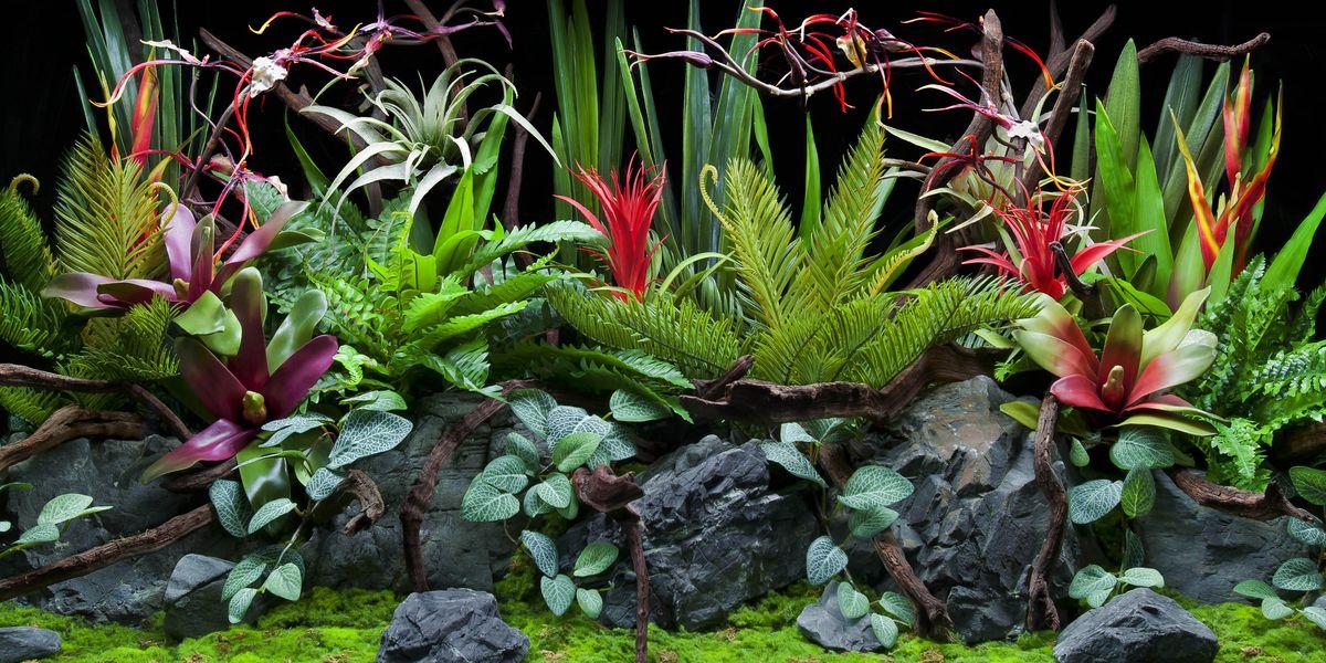 Фон аквариумный Barbus Глубоководная флора. Мечта пустыни, двухсторонний, 60 х 124 смBACKGROUND 024