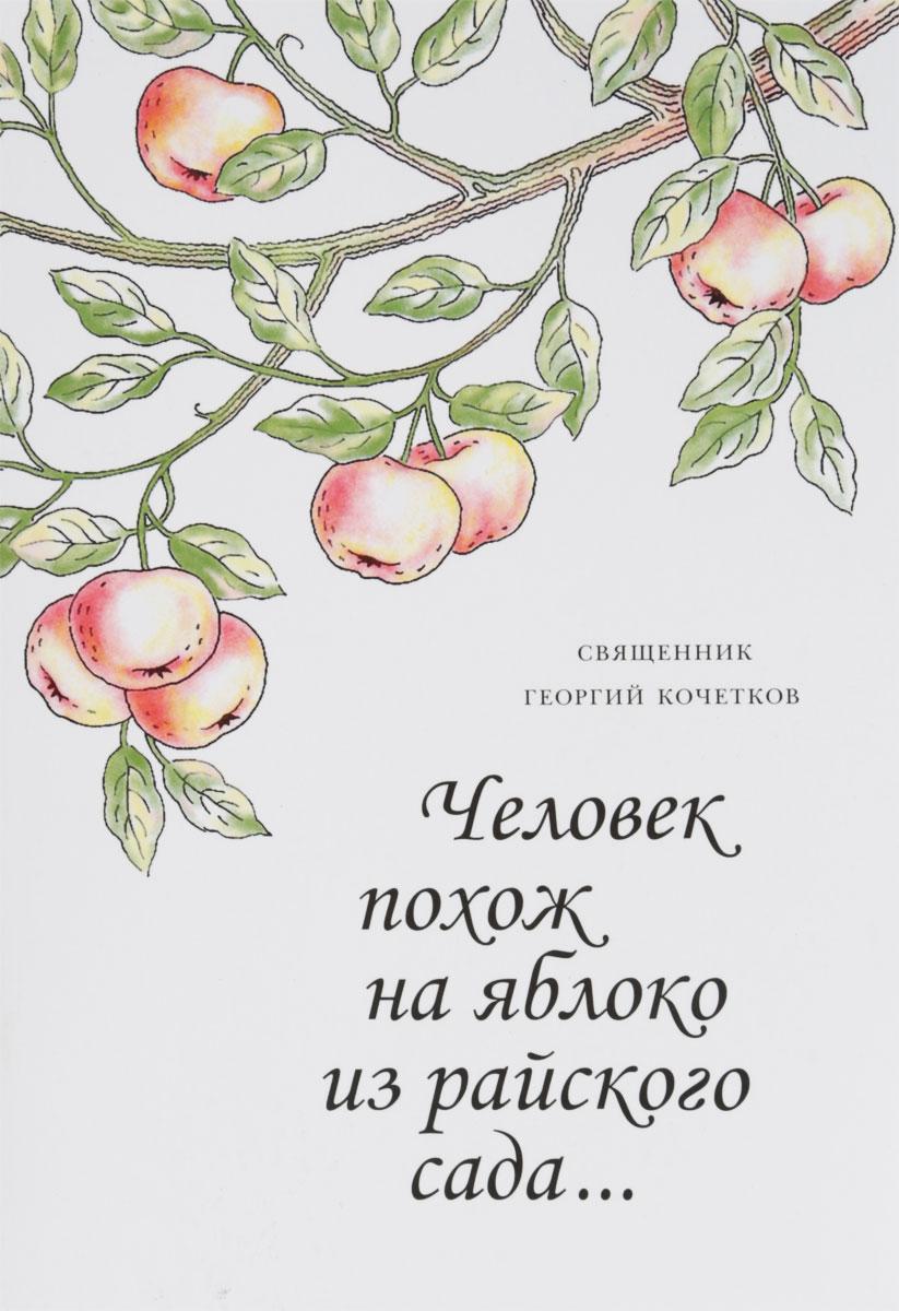 Священник Георгий Кочетков Человек похож на яблоко из райского сада…
