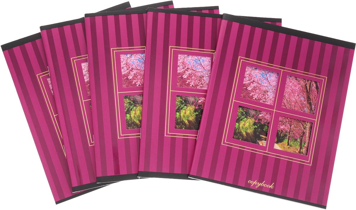 КТС-Про Набор тетрадей Вид из окна 48 листов в клетку цвет бордовый 5 шт -  Тетради