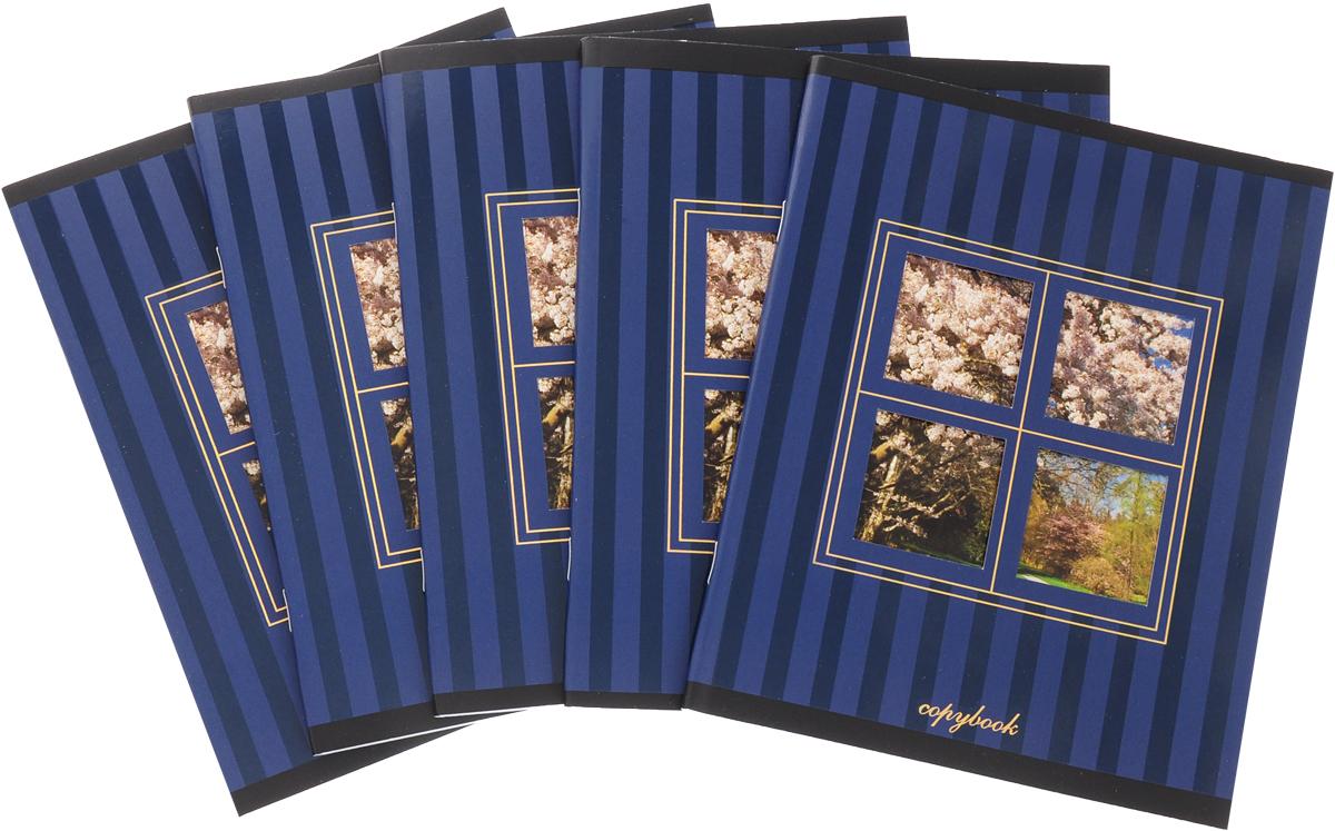 КТС-Про Набор тетрадей Вид из окна 48 листов в клетку цвет синий 5 шт -  Тетради