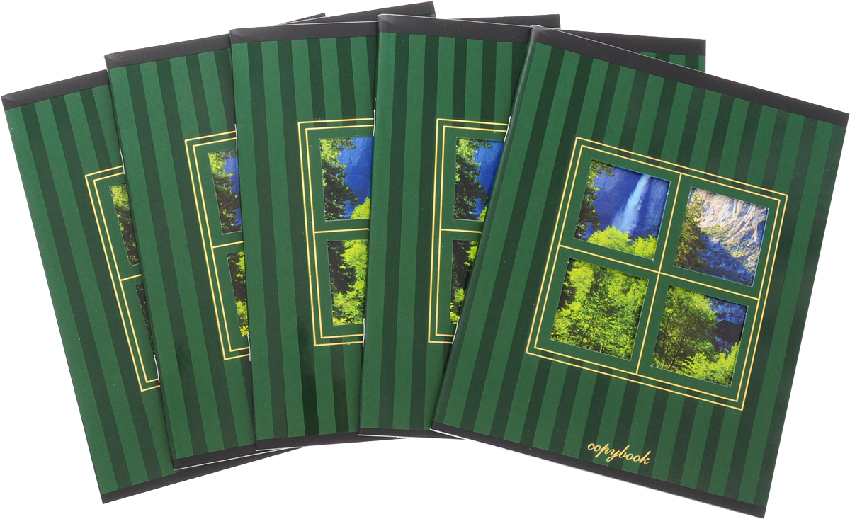 КТС-Про Набор тетрадей Вид из окна 48 листов в клетку цвет зеленый 5 шт -  Тетради