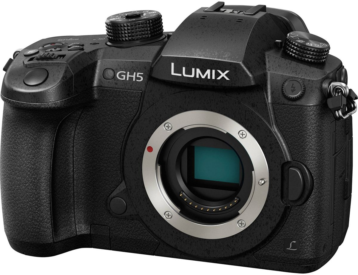 Zakazat.ru Panasonic Lumix DC-GH5 Body, Black цифровая фотокамера