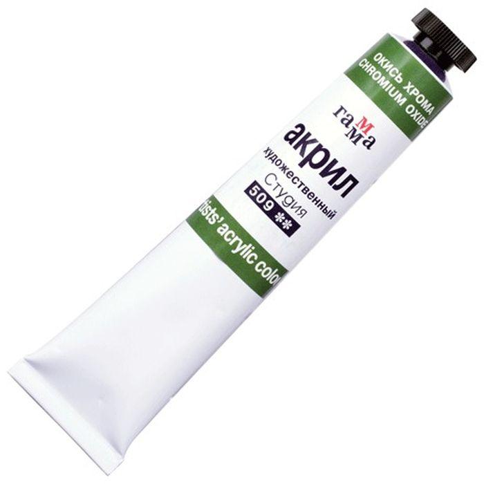 Гамма Краска акриловая цвет 509 окись хрома 46 мл190575Акриловая краска Гамма предназначена для живописи и декоративных работ. Легко наносится практически на любую поверхность. Яркий и насыщенный цвет. Быстрое высыхание без изменения цвета. Отличная укрывистость и светостойкость. В производстве красок Гамма используются современные высококачественные тонкотертые пигменты и акриловые композиции, изготовленные по мировым стандартам. Акриловая дисперсия красок гарантирует хорошую адгезию краски и абсолютную водонепроницаемость.