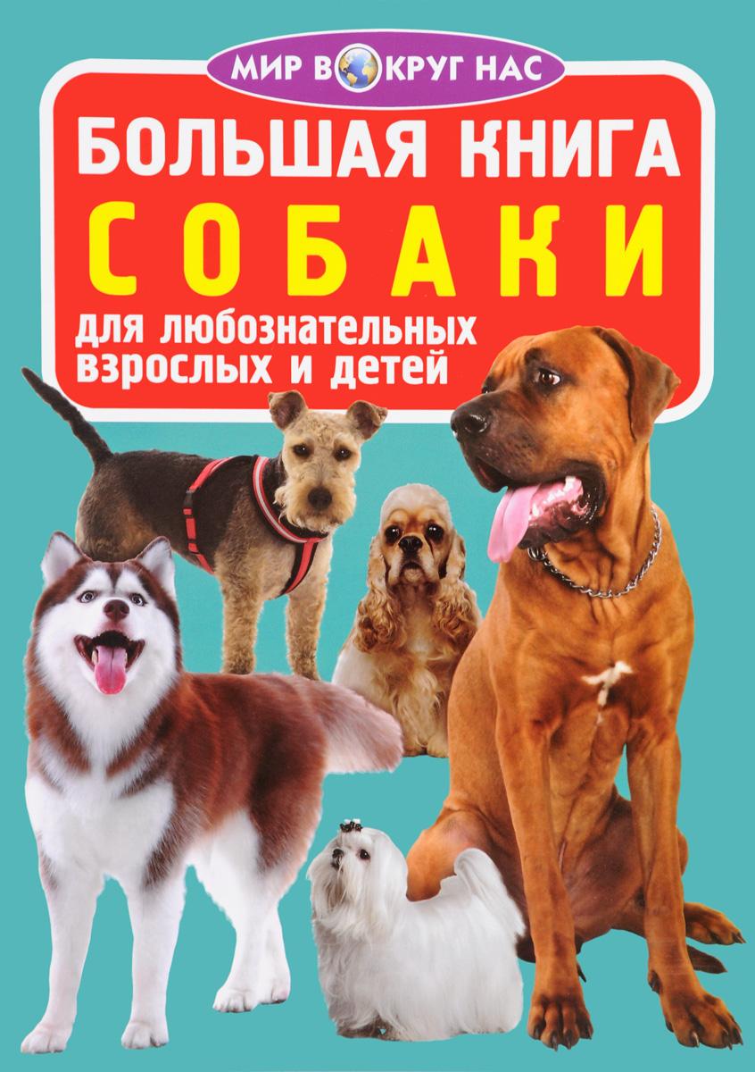 О. В. Завязкин Собаки завязкин о в большая книга собаки