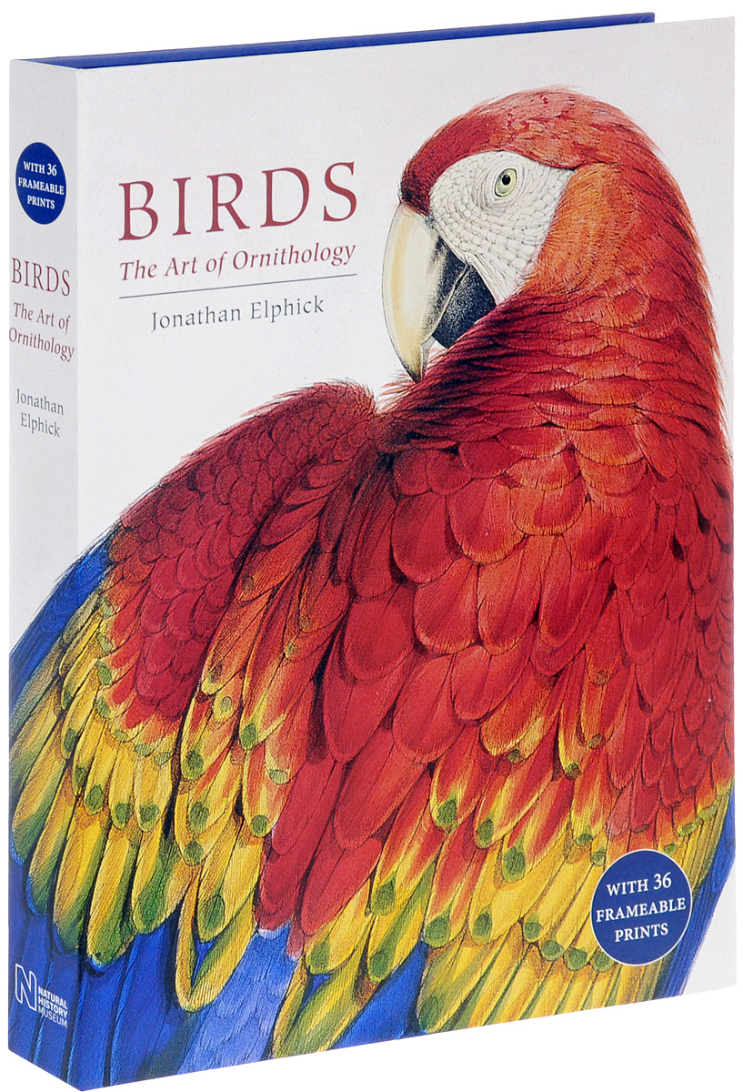 Birds: The Art of Ornithology birds the art of ornithology