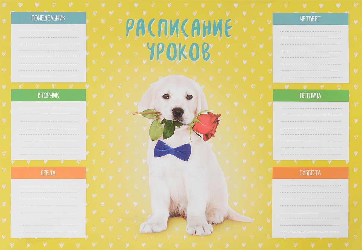 ArtSpace Расписание уроков Питомцы Собака формат A3
