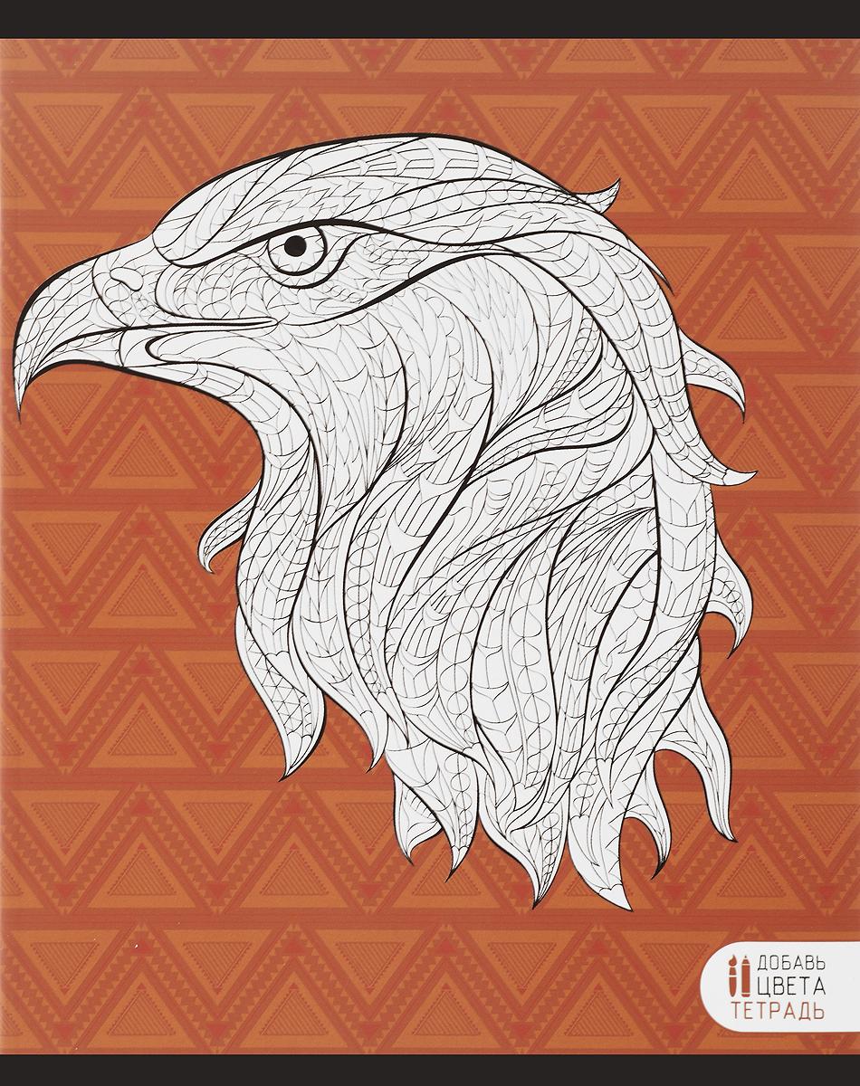 Канц-Эксмо Тетрадь Фантастические животные Орел 48 листов в клеткуТК485248_орел