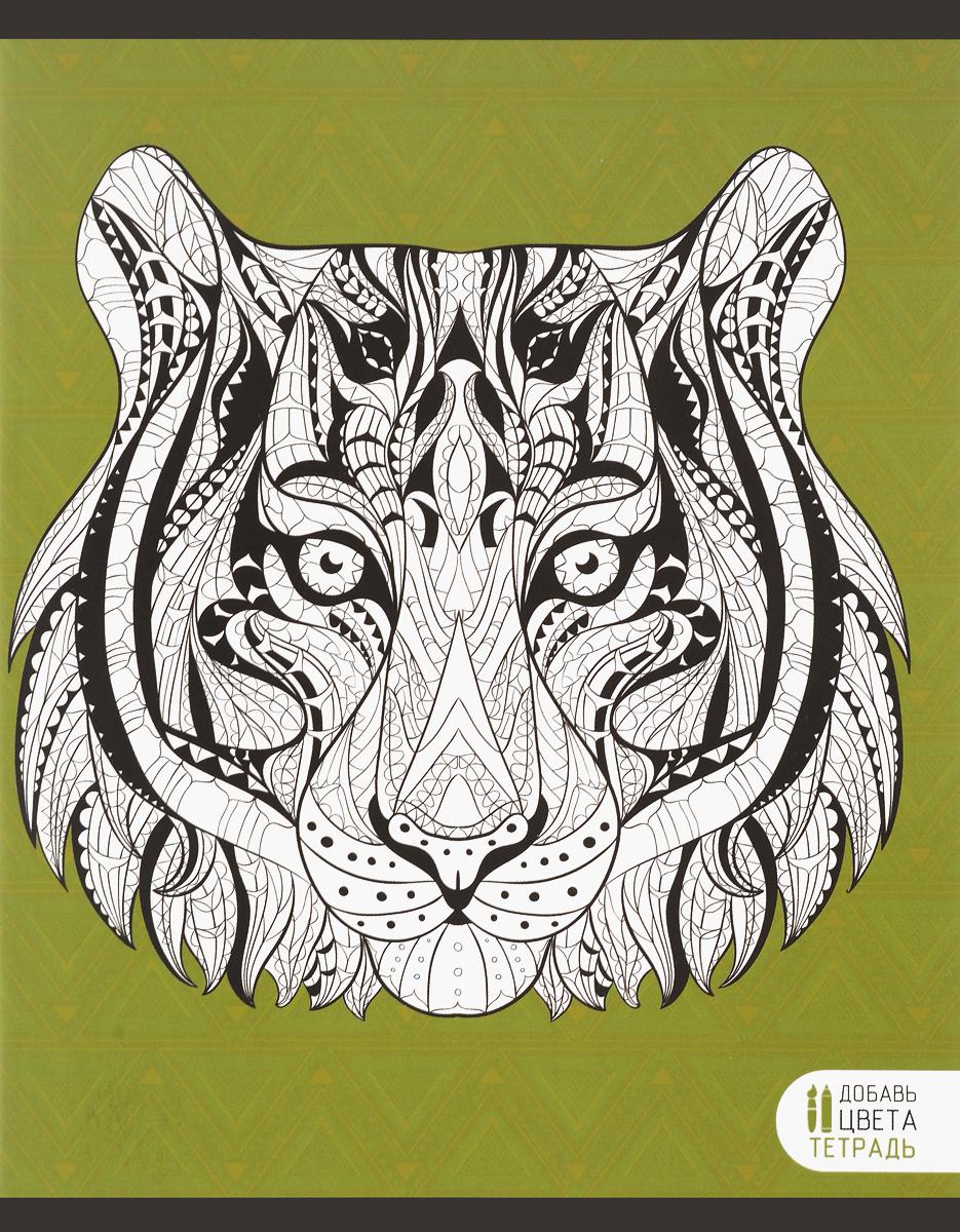 Канц-Эксмо Тетрадь Фантастические животные Тигр 48 листов в клеткуТК485248_тигрТетрадь Канц-Эксмо Фантастические животные. Тигр формат А5, 48 листов в клетку. Крепление - скрепка. Обложка: мелованный картон, матовый ВД-лак. Внутренний блок: бумага офсетная 60 г/м2.Тетрадь Фантастические животные - востребованный товар для школьников любого возраста. Для изготовления используется только бумага отличного качества. Это обеспечивает не только презентабельный вид изделия, но и удобство его использования. Писать на таких листах очень легко. Также они имеют оптимальную плотность, поэтому не просвечиваются, можно даже пользоваться гелиевыми ручками или маркерами. Особенным отличием данных тетрадей является оригинальная обложка, которую вы можете раскрасить по своему усмотрению.