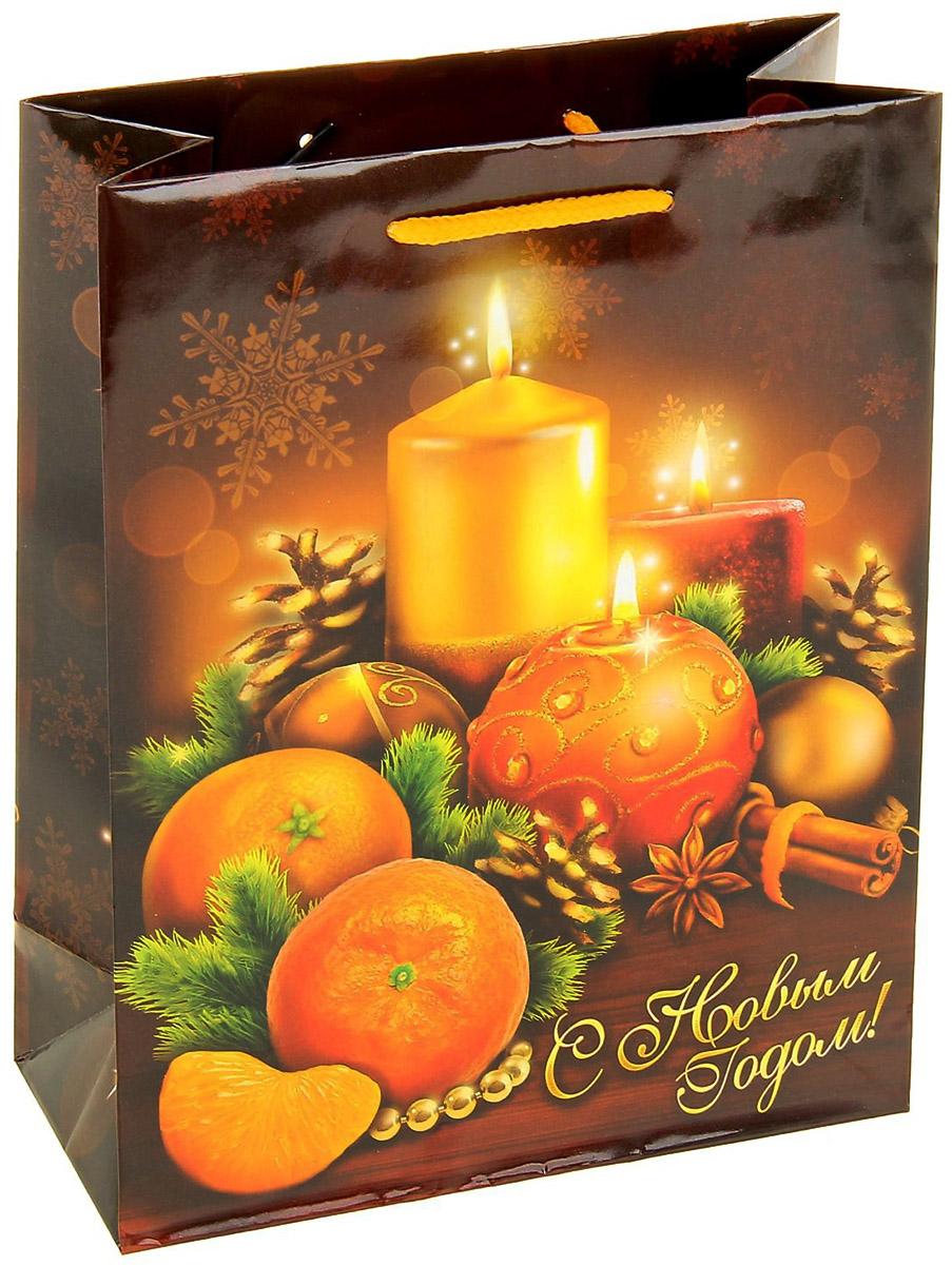 Пакет подарочный Sima-land Новогодние свечи, вертикальный, 18 х 23 см1052979Сделанная своими руками оригинальная упаковка выделит презент из массы других, расскажет о ваших тёплых чувствах, наполнит праздник сказочной атмосферой. Благодаря нашему набору для творчества сделать её не составит труда! Следуйте инструкции, и вы легко создадите яркую, привлекающую внимание коробочку.