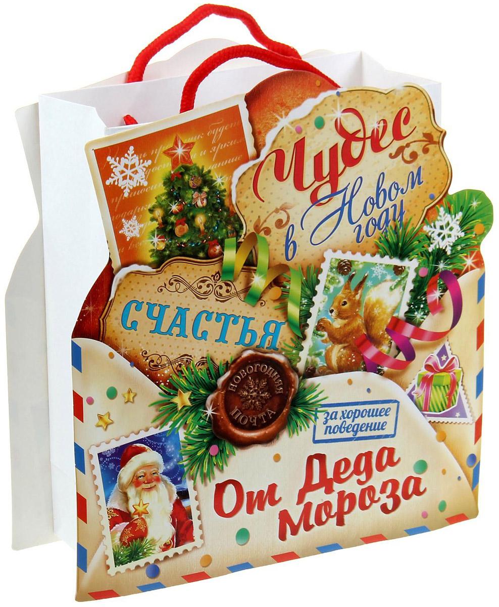 Пакет-открытка Sima-land Письмо от деда Мороза, 18 х 23 см открытка прорастайка sima land желаю крепкого здоровья