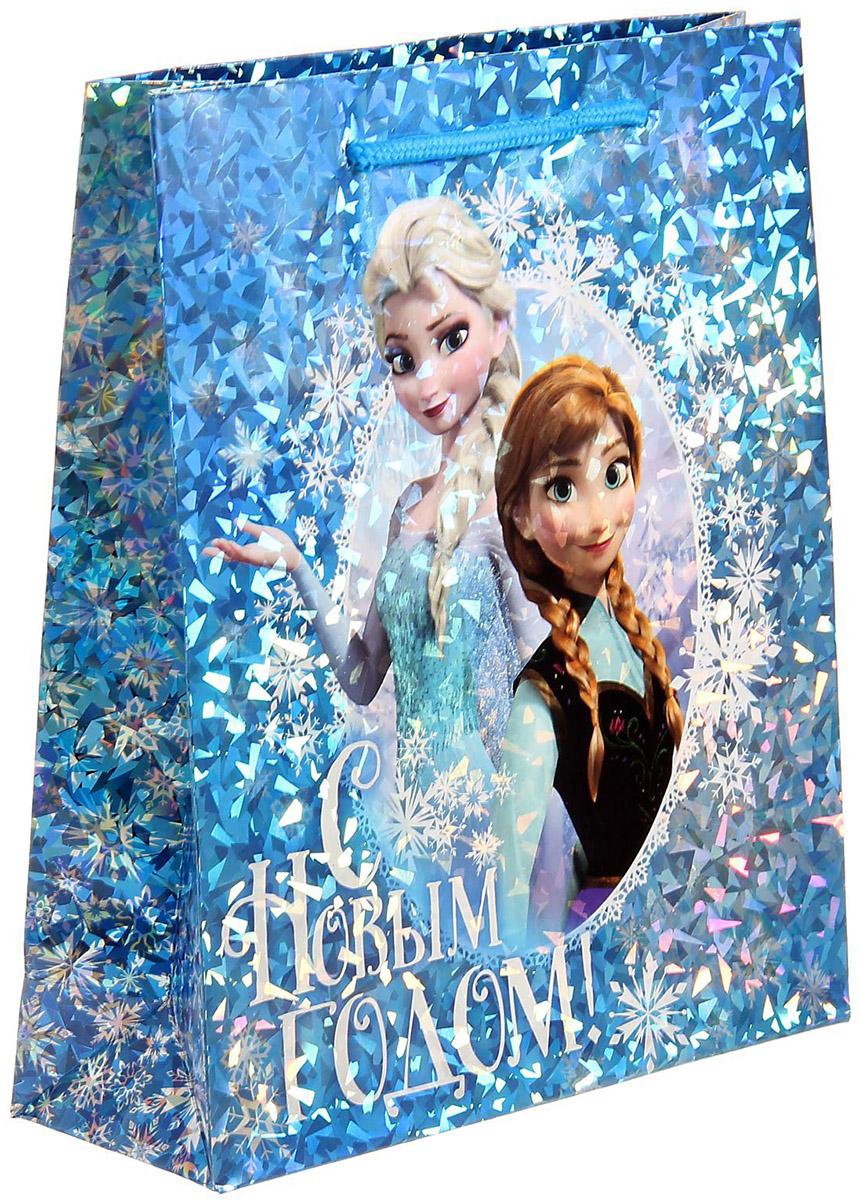 Пакет подарочный Disney Холодное сердце. С Новым годом!, голография, вертикальный, 23 х 27 см1121634Подарочный пакет Disney Холодное сердце. С Новым годом!, изготовленный из картона, станет незаменимым дополнением к выбранному подарку. Для удобной переноски на пакете имеются две ручки. Подарок, преподнесенный в оригинальной упаковке, всегда будет самымэффектным и запоминающимся. Окружите близких людей вниманием и заботой, вручив презент в нарядном, праздничном оформлении.