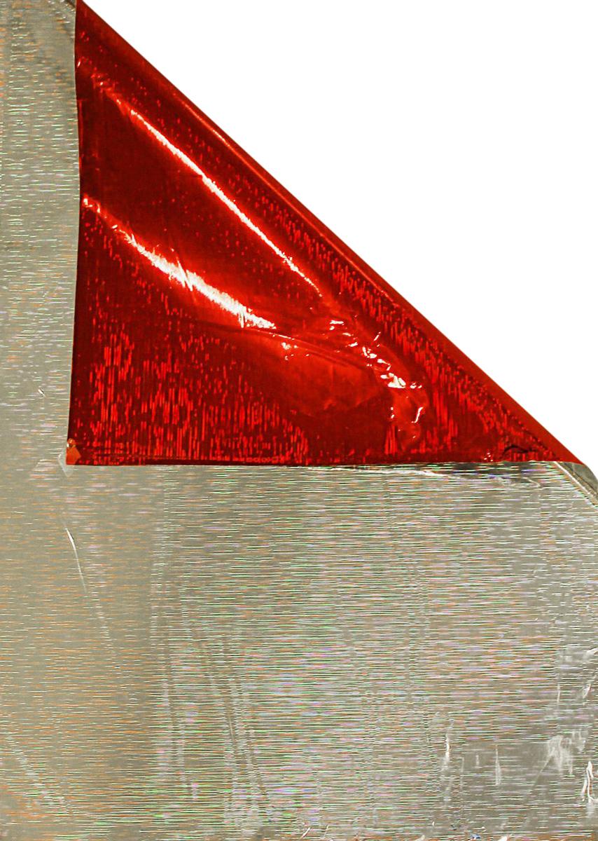 Пакет подарочный Sima-land, голографический, цвет: красный, 50 х 35 см1317974Голографический подарочный пакет Sima-land - это стильный и модный тренд в декоре и упаковке. Он универсален в оформлении любой продукции и подарка и сделает даже обычный презент заметным, приятным и стильным.Наилучшее решение, если вы хотите порадовать ваших близких и создать праздничное настроение, ведь подарок, преподнесенный в оригинальной упаковке, всегда будет самым эффектным и запоминающимся.
