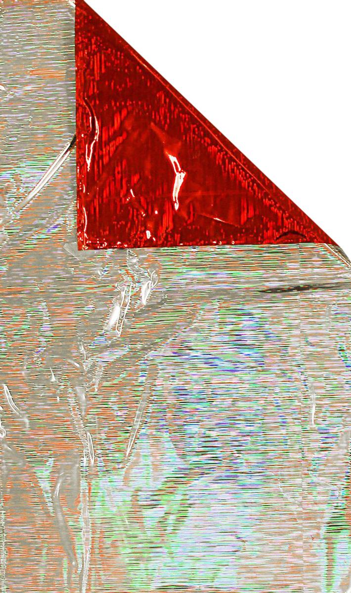 Пакет подарочный Sima-land, голографический, цвет: красный, 40 х 23 см1317977Сделанная своими руками оригинальная упаковка выделит презент из массы других, расскажет о ваших тёплых чувствах, наполнит праздник сказочной атмосферой. Благодаря нашему набору для творчества сделать её не составит труда! Следуйте инструкции, и вы легко создадите яркую, привлекающую внимание коробочку.