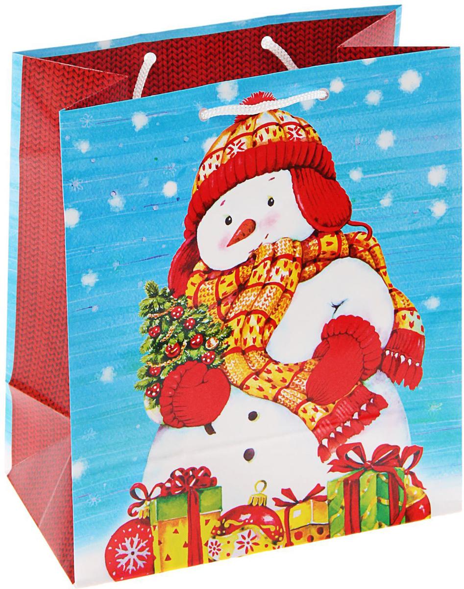 Пакет подарочный Арт и Дизайн Подарки от снеговика, 24 х 20,3 х 11,5 см1606129Сделанная своими руками оригинальная упаковка выделит презент из массы других, расскажет о ваших тёплых чувствах, наполнит праздник сказочной атмосферой, Благодаря нашему набору для творчества сделать её не составит труда! Следуйте инструкции, и вы легко создадите яркую, привлекающую внимание коробочку.