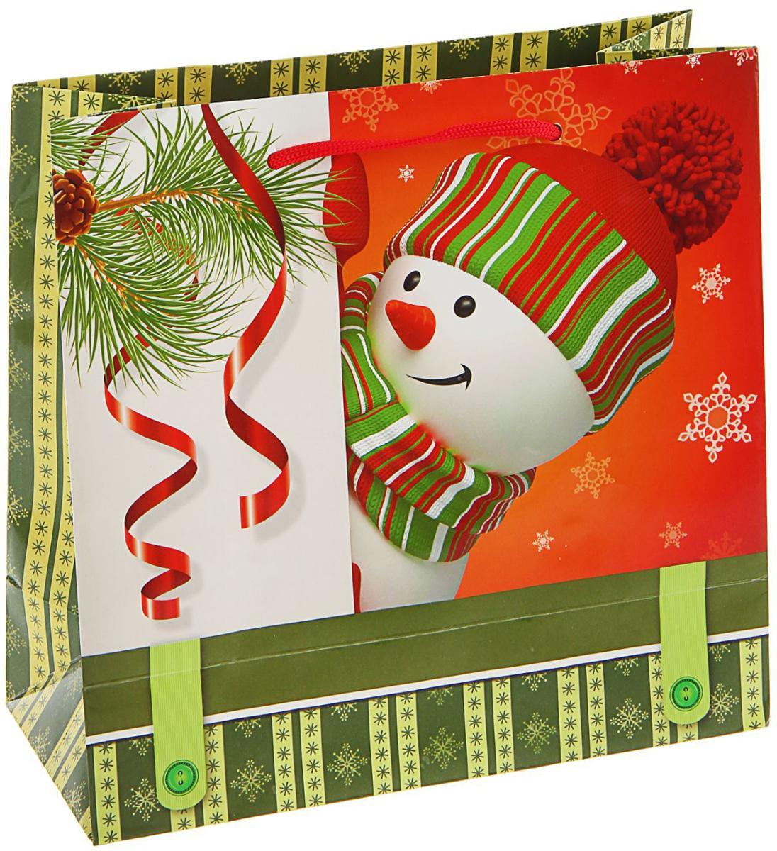 Пакет подарочный Sima-land Озорной снеговик, 23 х 22,5 х 10 см1686070Подарочный пакет Sima-land, изготовленный из плотной бумаги, станет незаменимым дополнением к выбранному подарку. Дно изделия укреплено плотным картоном, который позволяет сохранить форму и исключает возможность деформации дна под тяжестью подарка. Для удобной переноски имеются две ручки из шнурков. Подарок, преподнесенный в оригинальной упаковке, всегда будет самым эффектным и запоминающимся. Окружите близких людей вниманием и заботой, вручив презент в нарядном, праздничном оформлении.