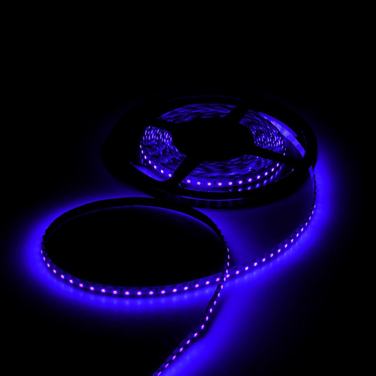 Светодиодная лента Luazon, 12В, SMD3528, длина 5 м, IP33, 120 LED ламп, 9.6 Вт/м, 6-7 Лм/1 LED, DC, цвет: синий. 883896883896Светодиодные гирлянды, ленты и т.д — это отличный вариант для новогоднего оформления интерьера или фасада. С их помощью помещение любого размера можно превратить в праздничный зал, а внешние элементы зданий, украшенные ими, мгновенно станут напоминать очертания сказочного дворца. Такие украшения создают ауру предвкушения чуда. Деревья, фасады, витрины, окна и арки будто специально созданы, чтобы вы украсили их светящимися нитями.