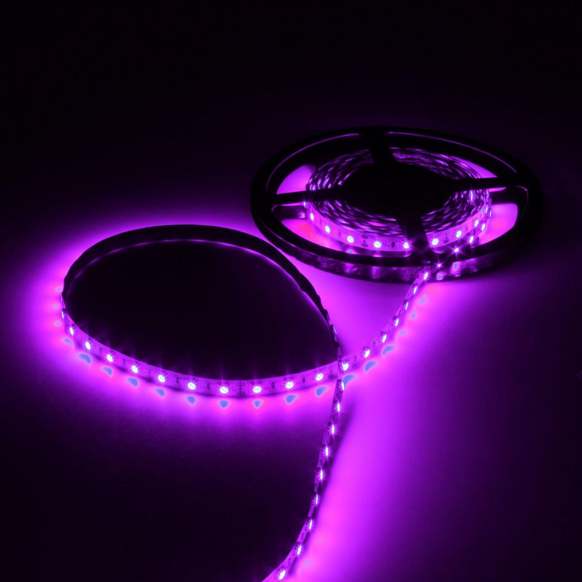 Светодиодная лента Luazon, 60 LED ламп, 12В, 14.4 Вт/м, 14-16 Лм/1 LED, DC, длина 5 м883945Светодиодная лента Luazon - это отличный вариант для новогоднего оформления интерьера или фасада. С ее помощью помещение любого размера можно превратить в праздничный зал, а внешние элементы зданий, украшенные ей, мгновенно станут напоминать очертания сказочного дворца. Деревья, фасады, витрины, окна и арки будто специально созданы, чтобы вы украсили их светящимися нитями.Дополнительные характеристики: - Размер светодиодов: 5050.- Цвет: фиолетовый.- Класс пылезащищенности: IP33.