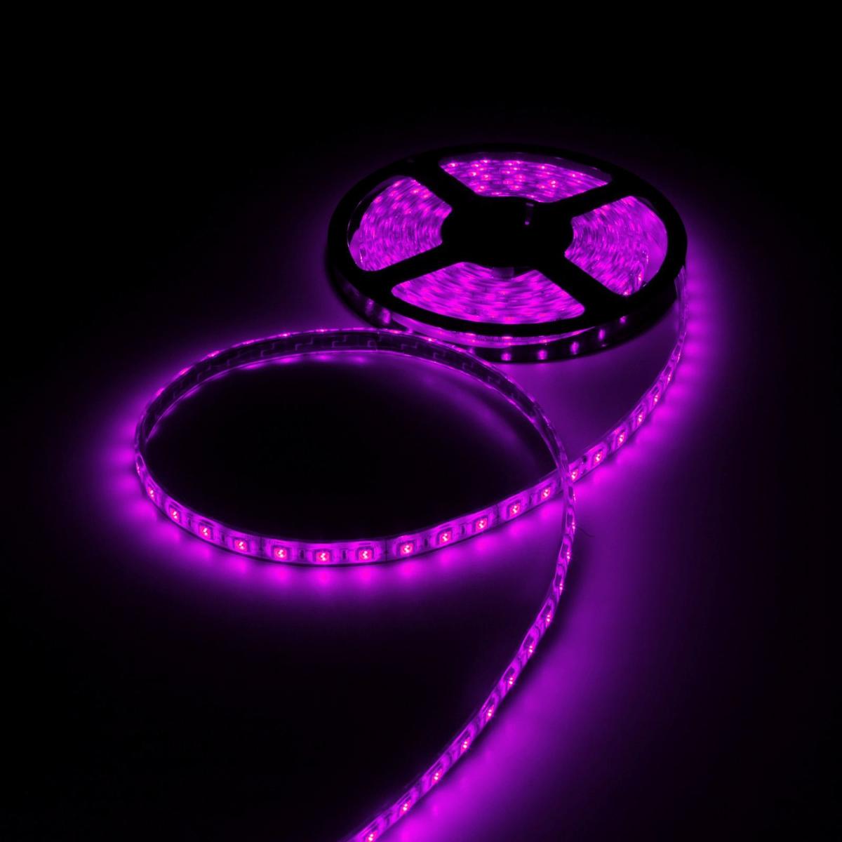 Светодиодная лента Luazon, 12В, SMD5050, длина 5 м, IP68, 60 LED ламп, 14.4 Вт/м, 14-16 Лм/1 LED, DC, цвет: фиолетовый883961Светодиодные гирлянды, ленты и т.д — это отличный вариант для новогоднего оформления интерьера или фасада. С их помощью помещение любого размера можно превратить в праздничный зал, а внешние элементы зданий, украшенные ими, мгновенно станут напоминать очертания сказочного дворца. Такие украшения создают ауру предвкушения чуда. Деревья, фасады, витрины, окна и арки будто специально созданы, чтобы вы украсили их светящимися нитями.