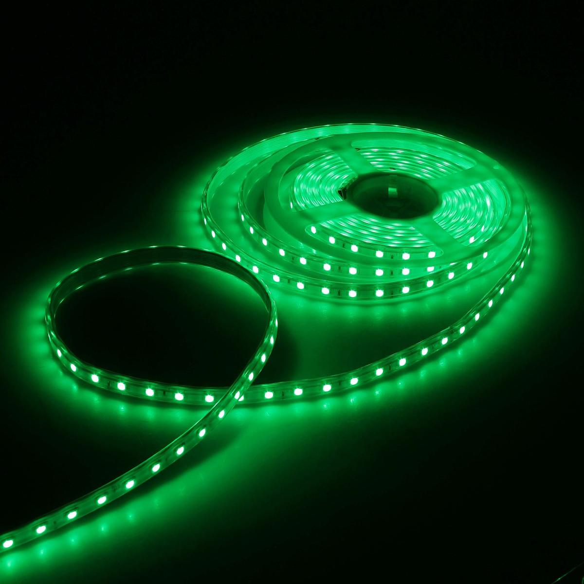 Светодиодная лента Luazon, 220В, SMD5050, длина 5 м, IP65, 60 LED ламп, 11 Вт/м, 16-18 Лм/1 LED, AC, цвет: зеленый883973Светодиодные гирлянды, ленты и т.д — это отличный вариант для новогоднего оформления интерьера или фасада. С их помощью помещение любого размера можно превратить в праздничный зал, а внешние элементы зданий, украшенные ими, мгновенно станут напоминать очертания сказочного дворца. Такие украшения создают ауру предвкушения чуда. Деревья, фасады, витрины, окна и арки будто специально созданы, чтобы вы украсили их светящимися нитями.
