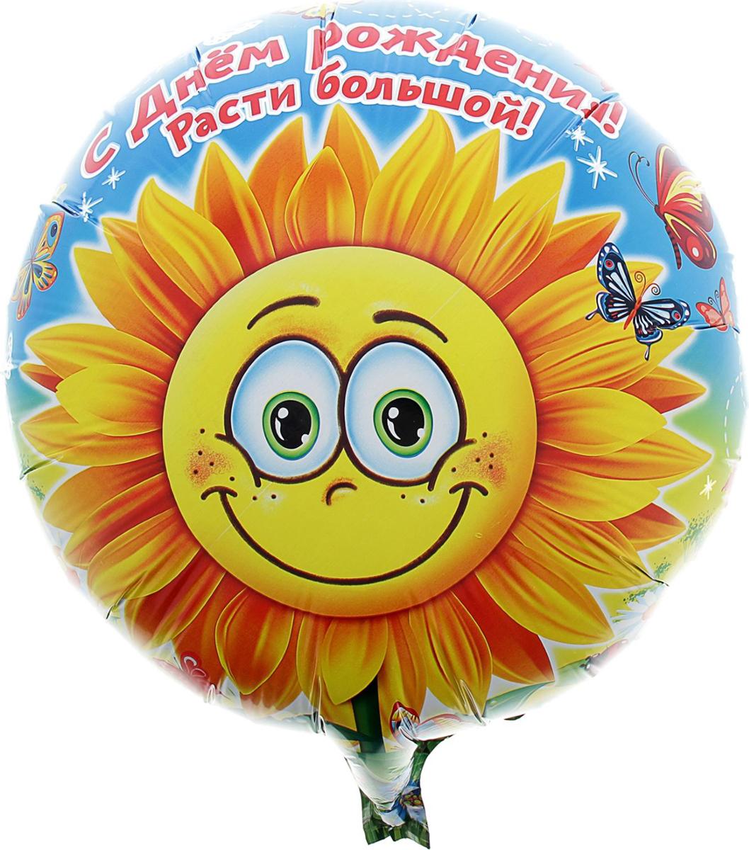 Страна Карнавалия Шар фольгированный С Днем Рождения Расти большой Круг 18 дюймов 332965 страна карнавалия шар воздушный с днем рождения корона 5 шт