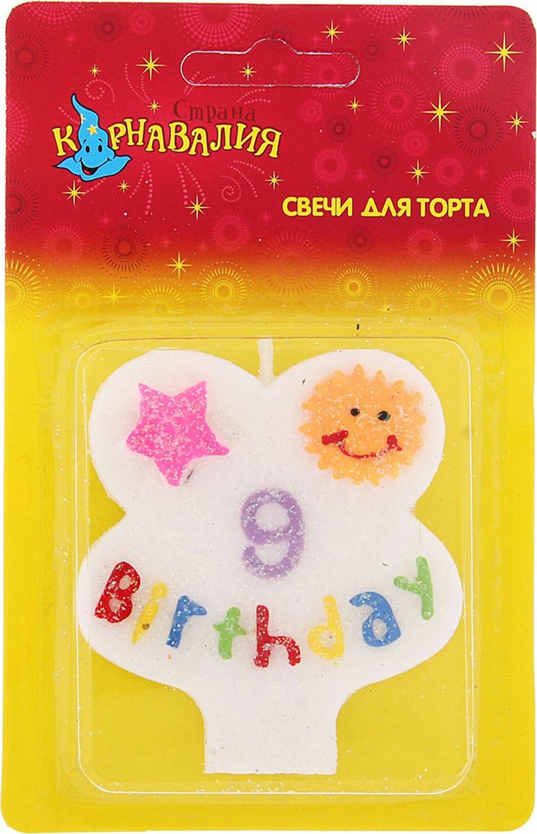 Страна Карнавалия Свеча воск для торта цифра 9 день рождения 635674