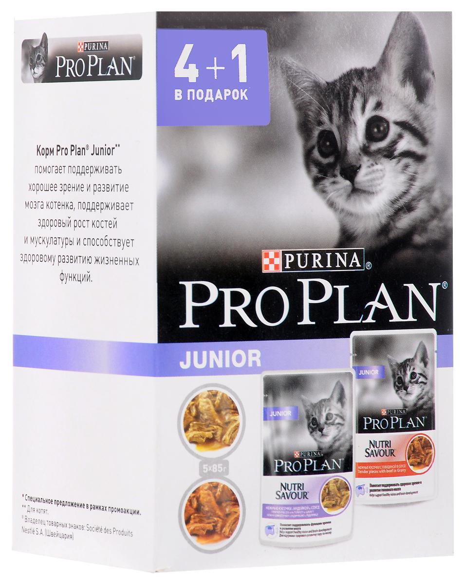 Консервы Pro Plan Junior для кошек с чувствительным пищеварением и привередливых к еде, с говядиной, 5 шт х 85 г65144Консервы для кошекPro Plan Junior -вкусный, но сбалансированный полезный корм, который обеспечит им получение всех жизненно важных питательных веществ. Изменение энергетических потребностей питомцев происходит в зависимости от возраста: баланс витаминов, протеинов и минералов имеет свои особенности, которые обязательно надо учитывать при выборе корма. Идеальным с этой точки зрения является сбалансированный корм консервированный Pro Plan, который разрабатывался для данной группы домашних любимцев. Его регулярное употребление имеет массу достоинств, так как питомцы: получают необходимую энергию через полноценное питание; становятся веселыми и игривыми; радуют хозяев здоровой и блестящей шерстью. Корм Pro Plan из категории «мясное ассорти» привлекателен для кошек неотразимым вкусом и запахом, и любим даже теми, кто со всей тщательностью подходит к выбору пищи.Проказники обожают лакомиться этим кормом, потому что в нем содержится их любимая еда - индейка. А это очень полезный и жизненно необходимый для организма питомца продукт. Преимущества корма Pro Plan очевидны, так как в их основе лежат следующие факты: Корм производится с использованием новейших технологий и на современном оборудовании. В нем сохраняются и витамины и минералы.Сбалансированный состав питательных веществ для здорового роста котят.МЕ/кг: Витамин A: 1329; витамин D3: 185; витамин E: 295. Мг/кг: таурин: 573; железо: 12,68; йод: 0,48; медь: 1,21; марганец: 2,22; цинк: 34,35; селен: 0,028. Влажность: 78%, белок: 12,5%, жир: 4%, сырая зола: 2,4%, сырая клетчатка: 0,3%, ДГК: 0,01%.