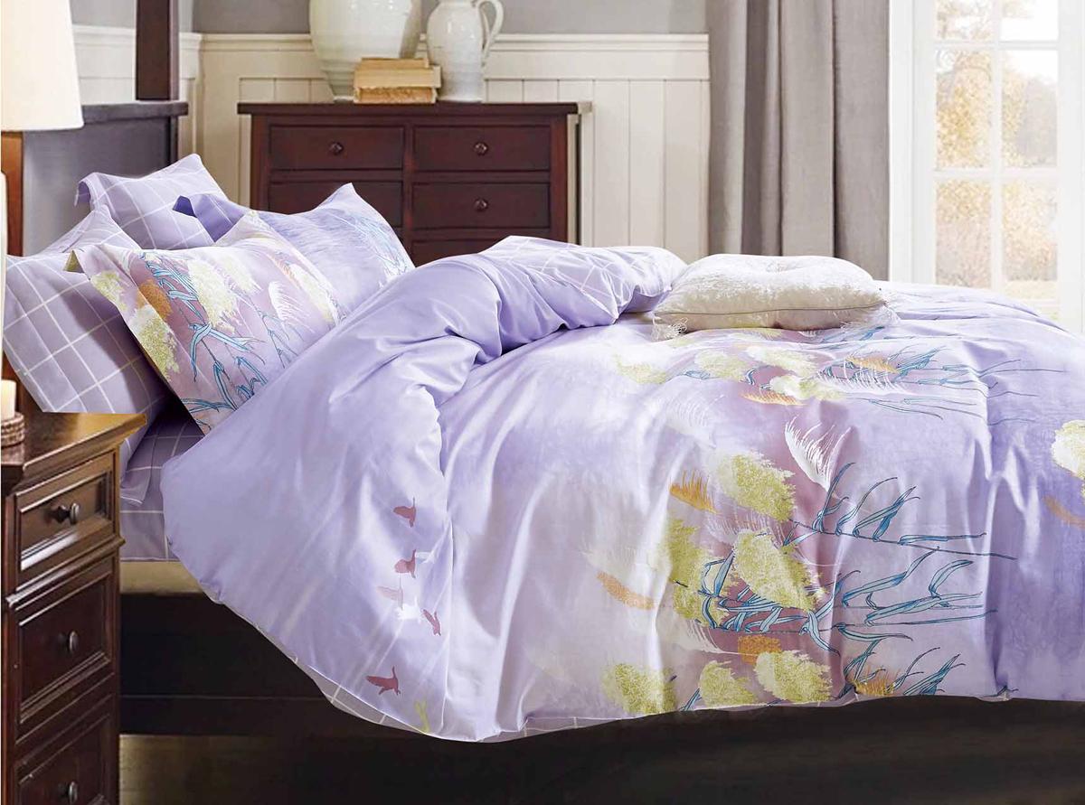 Комплект белья Soft Line, 2-спальный, наволочки 50x70. 1055310553Роскошный комплект постельного белья Soft Line выполнен из качественного плотного сатина и украшен оригинальным рисунком. Комплект состоит из пододеяльника, простыни и двух наволочек.Постельное белье Soft Line подобно облаку сочетает в себе плотность цвета и безграничную нежность фактуры. Это белье обладает волшебной практичностью, а потому оказываться на седьмом небе станет вашим привычным занятием.Доверьте заботу о качестве вашего сна высококачественному натуральному материалу.Сатин - это ткань из 100% натурального хлопка. Мягкость и нежность материала создает чувство комфорта и защищенности. Классический натуральный природный материал делает это постельное белье нежным, элегантным и приятным.