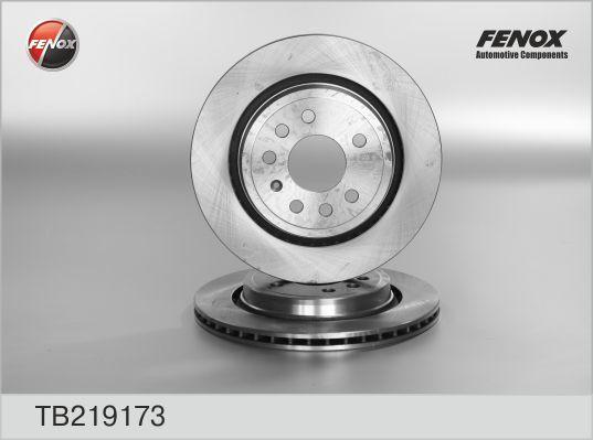 Диск тормозной Fenox TB219173 комплект 2 штTB219173