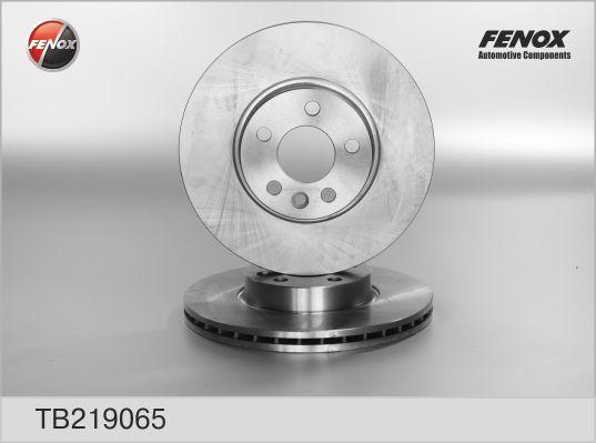 Диск тормозной Fenox TB219065 комплект 2 штTB219065