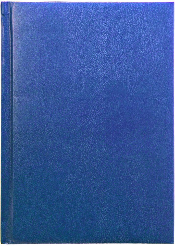 Index Ежедневник Profy 336 листов цвет синий формат А5IDN116/A5/BUОбложка - высококачественная искусственная кожа, поролоновая подкладка. Внутренний блок - белый, офсет плотностью 70 г/м2, цветная печать. Переплет - твердый, каптал, ляссе. Дополнительные разделы: справочно - информационный блок, телефонно - адресная книга.336 страниц. Формат А5