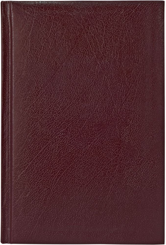Index Ежедневник Profy 336 листов цвет сливовый формат А5 -