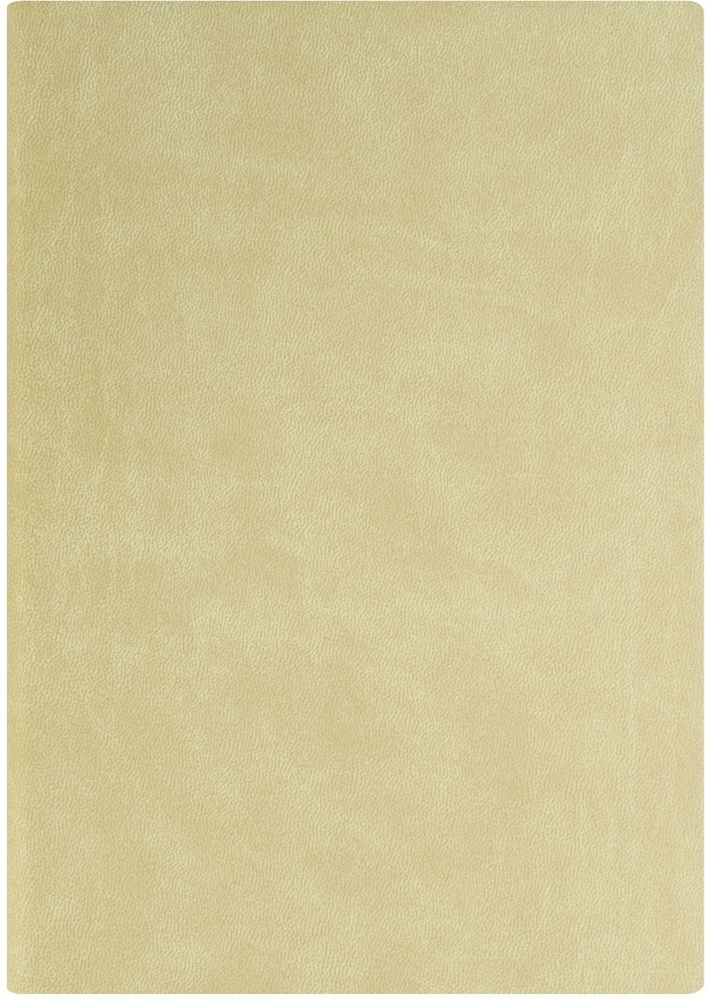 Index Ежедневник Spectrum 256 листов цвет бежевый формат А5IDN121/A5/BEГибкая обложка на резинке, карман для визиток; нахзац и форзац, ляссе и резинка в цвет обложки; тонированная бумага 70гр/м2, 1 цв.печать, ляссе, перфорированные уголки