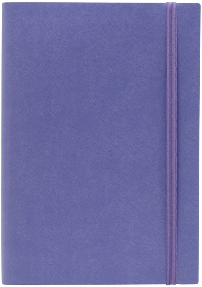 Index Ежедневник Spectrum недатированный 256 листов цвет лавандовый формат А5IDN121/A5/LCНедатированный ежедневник Index Spectrum формата А5 изготовлен из высококачественной искусственной кожи. Гибкая обложка на резинке, имеется карман для визиток. Внутренний блок – тонированная офсетная бумага плотностью 70 г/м2, цветная печать. Нахзац и форзац, ляссе и резинка в цвет обложки, перфорированные уголки.