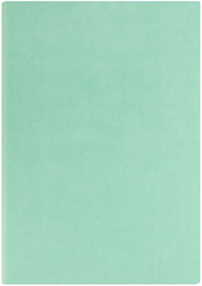 Index Ежедневник Spectrum недатированный 256 листов цвет мятный формат А5IDN121/A5/MTНедатированный ежедневник Index Spectrum формата А5 изготовлен из высококачественной искусственной кожи. Гибкая обложка на резинке, имеется карман для визиток. Внутренний блок – тонированная офсетная бумага плотностью 70 г/м2, цветная печать. Нахзац и форзац, ляссе и резинка в цвет обложки.