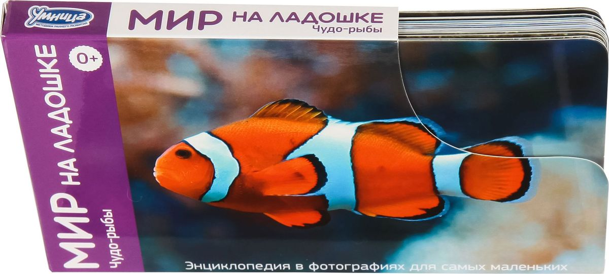 Умница Обучающие карточки Мир на ладошке Чудо-рыбы Часть 5.6 умница обучающие карточки мир на ладошке выпуск 5