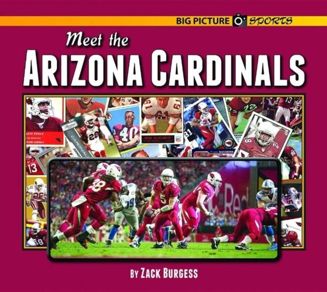 Meet the Arizona Cardinals
