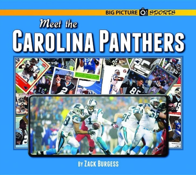 Meet the Carolina Panthers erin muschla teaching the common core math standards with hands on activities grades k 2