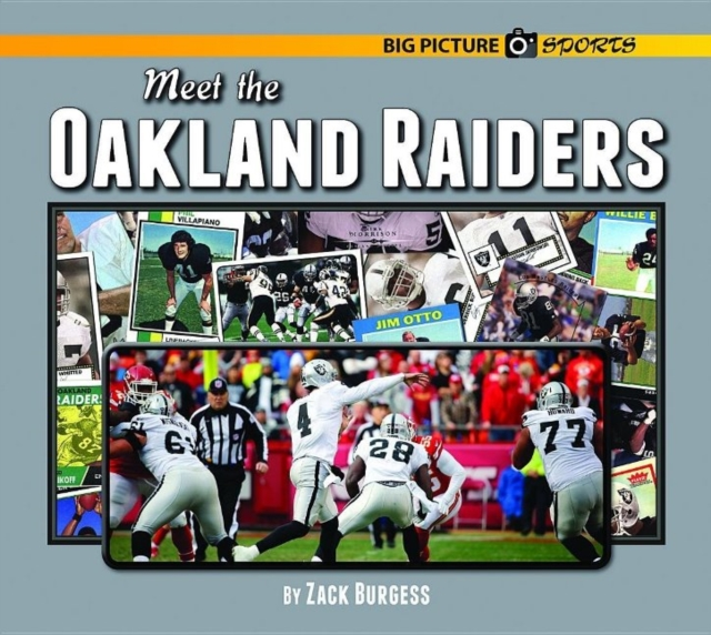 Meet the Oakland Raiders erin muschla teaching the common core math standards with hands on activities grades k 2