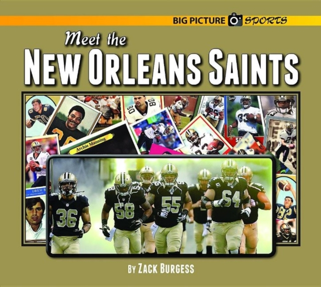 Meet the New Orleans Saints худи print bar new orleans saints