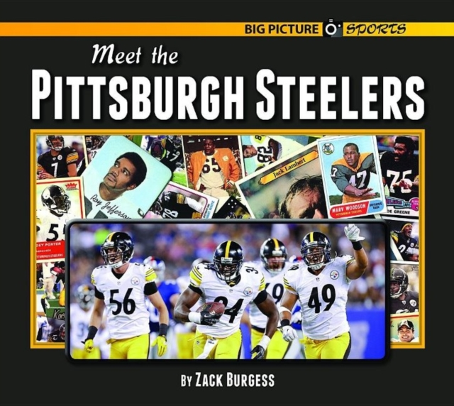 Meet the Pittsburgh Steelers