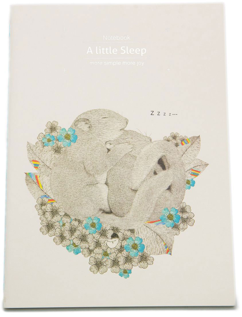Еж-стайл Тетрадь A Little Sleep Любовь в линейку 38 листов0101413