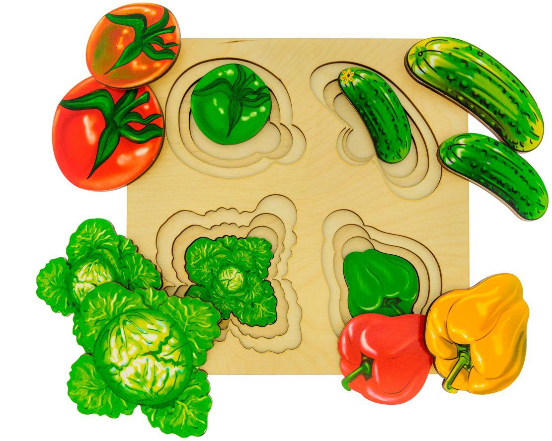 Анданте Развивающая доска Больше-меньше Овощи олег ольхов овощи на вашем столе