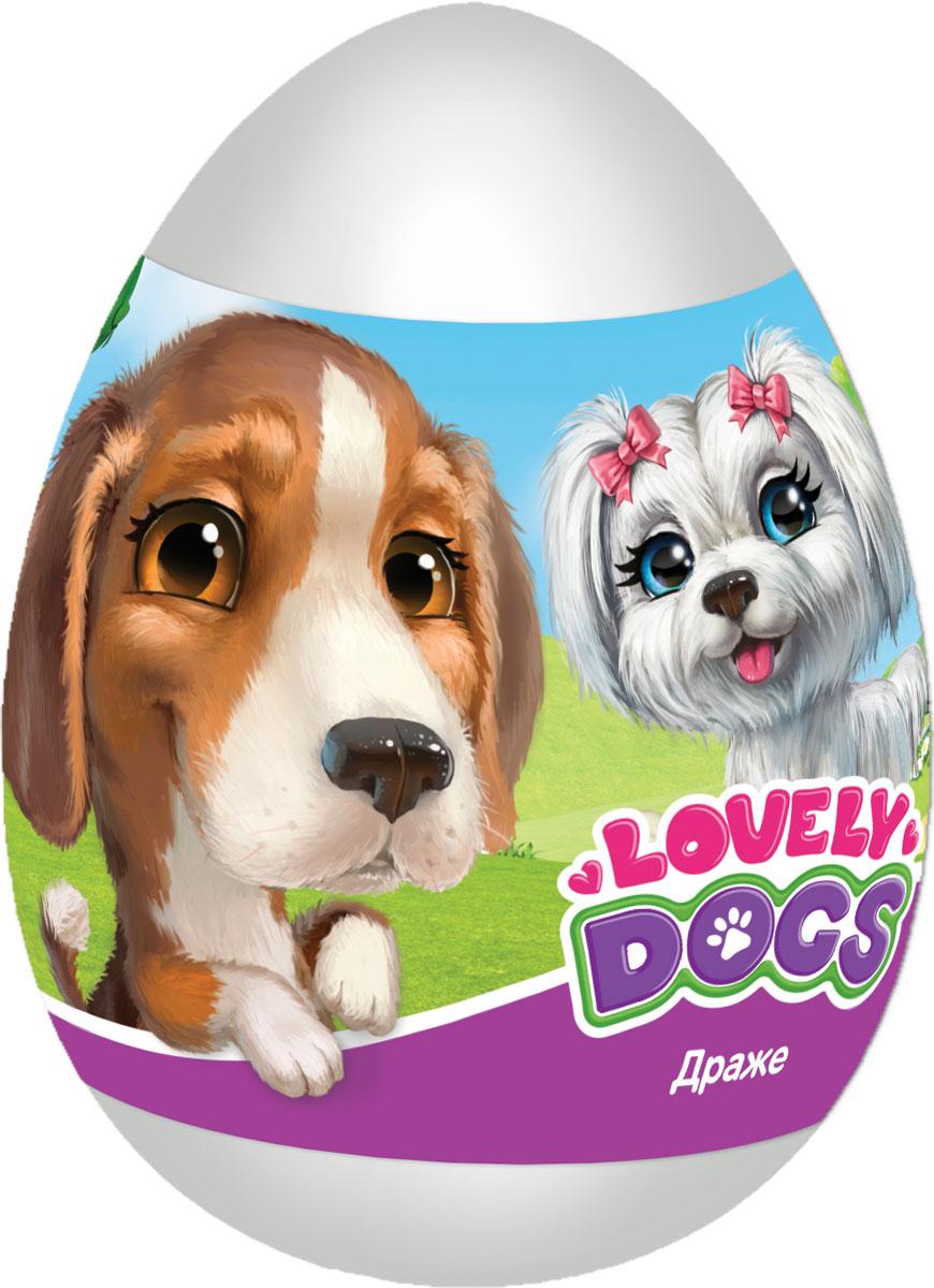 Конфитрейд Lovely dogs фруктовое драже с игрушкой, 20 г конфитрейд ретро автомобиль фруктовое драже с игрушкой 5 г