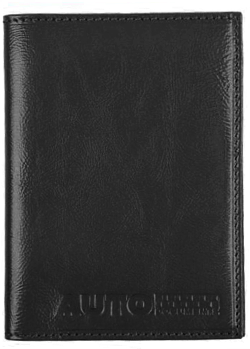 Обложка для автодокументов мужская Alliance, цвет: черный. 0-590-59Комплектуется пластиковым блоком