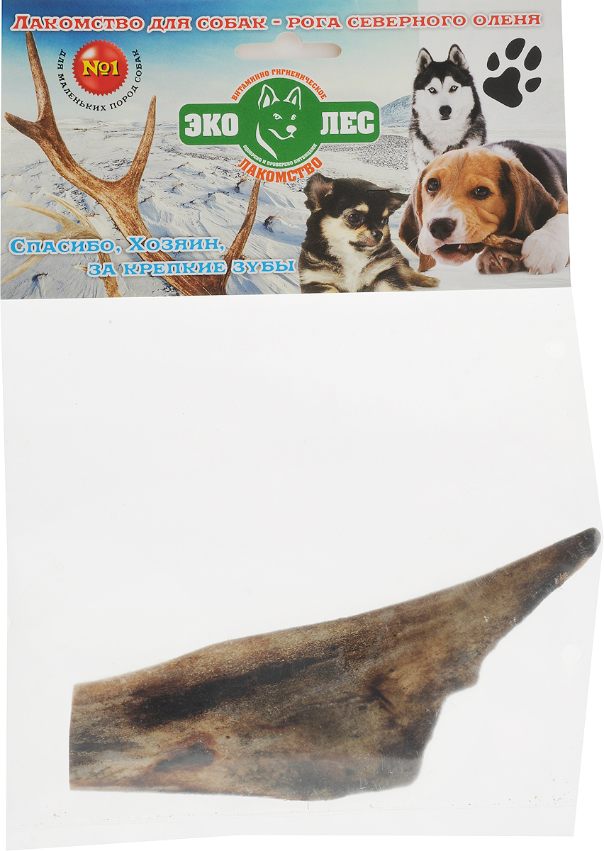 Лакомство для собак Эколес Рога Оленей №1, 50 г62942Рога оленя - это замечательная альтернатива привычным косточкам и деревянным палкам, они идеально подходят для ежедневного жевания и помогают быстро отучить собаку от порчи мебели и предметов интерьера. К тому же в отличие от костей, кожи, свиных ушей и прочих популярных лакомств, рога не имеют запаха, они чистые и не липкие. Потому даже если собака будет грызть их в комнате, она не испачкает и не повредит мебель или ковры.Одно из главных преимуществ подобного лакомства заключается в его особой пористой структуре. Рог оленя внутри не цельный, а пронизанный множеством бороздок от отмерших кровеносных сосудов, которые делают текстуру более хрупкой и комфортной для разгрызания. Кусочки легко откусываются, не портят зубы и десны, а благодаря своей структуре не травмируют пищевод и легко перевариваются. Благодаря такой особенности рога можно давать даже маленьким щенкам еще до начала смены зубов - Ваш любимец гарантировано получит от угощения только пользу и удовольствие. Тайная жизнь домашних животных: чем занять собаку, пока вы на работе. Статья OZON ГидЧем кормить пожилых собак: советы ветеринара. Статья OZON Гид